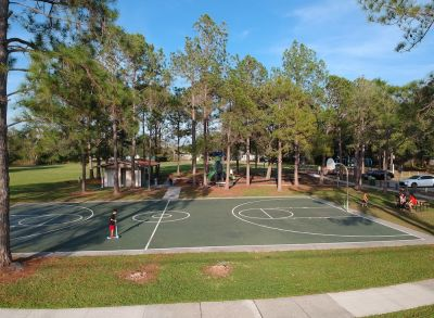 New Homes Carrollwood Village - Beacon Meadows Park